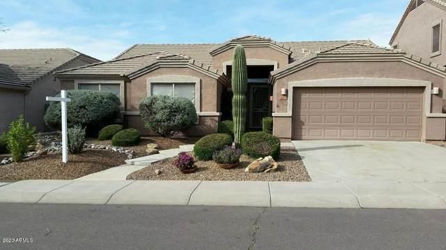 4224 E Spur Drive, Cave Creek, AZ 85331 (MLS #6117433) :: Lifestyle Partners Team