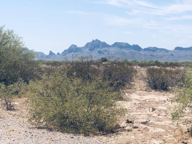No Address Assigned -- Lot, Tonopah, AZ 85354 (MLS #6117460) :: Long Realty West Valley