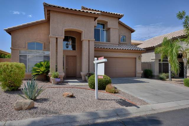 1309 E Sheena Drive, Phoenix, AZ 85022 (MLS #6117469) :: Klaus Team Real Estate Solutions