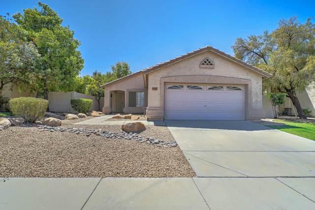 6917 W Juniper Avenue, Peoria, AZ 85382 (MLS #6117484) :: Kepple Real Estate Group