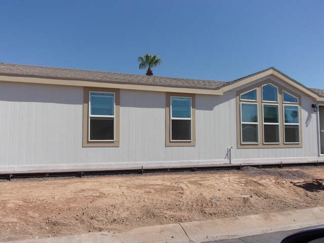 16430 N 35TH Place, Phoenix, AZ 85032 (MLS #6117486) :: Conway Real Estate