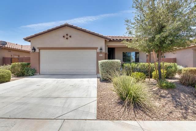 881 W Witt Avenue, San Tan Valley, AZ 85140 (MLS #6117529) :: Kepple Real Estate Group