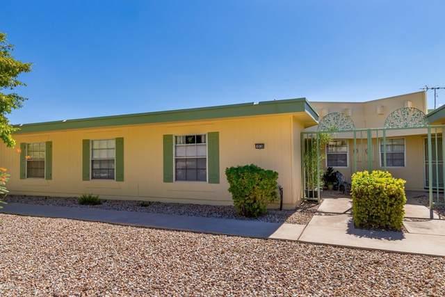 10538 W Ocotillo Drive, Sun City, AZ 85373 (MLS #6117536) :: Arizona Home Group