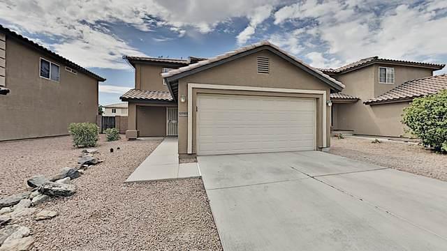 12005 W Columbine Drive, El Mirage, AZ 85335 (MLS #6117566) :: Conway Real Estate