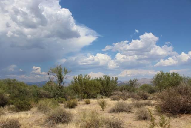 16000 E Bobwhite Way, Scottsdale, AZ 85262 (MLS #6117612) :: Walters Realty Group