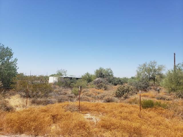 34644 N 53RD Street, Cave Creek, AZ 85331 (MLS #6117644) :: Walters Realty Group