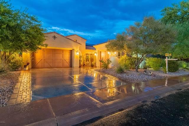 12906 W Oyer Lane, Peoria, AZ 85383 (MLS #6117679) :: Long Realty West Valley