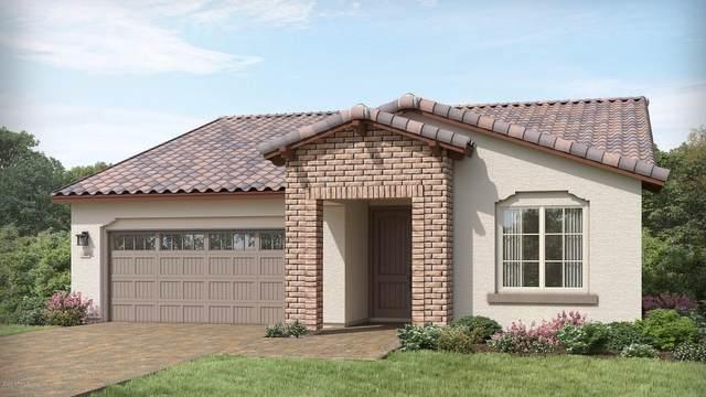 24874 N 172ND Lane, Surprise, AZ 85387 (MLS #6117683) :: Brett Tanner Home Selling Team