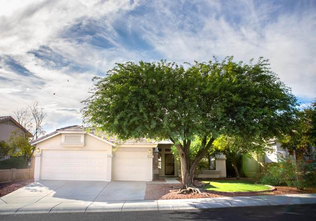 1710 E Runion Drive, Phoenix, AZ 85024 (MLS #6117696) :: The Everest Team at eXp Realty