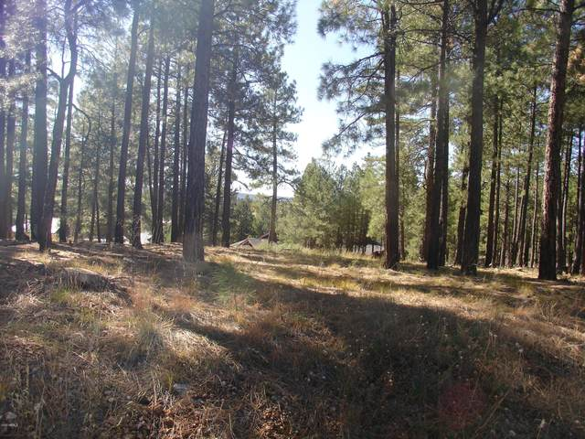 2128 Cecil Richardson, Flagstaff, AZ 86005 (MLS #6117697) :: Lifestyle Partners Team