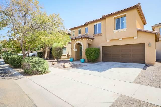 11891 N 147TH Drive, Surprise, AZ 85379 (MLS #6117716) :: Lifestyle Partners Team