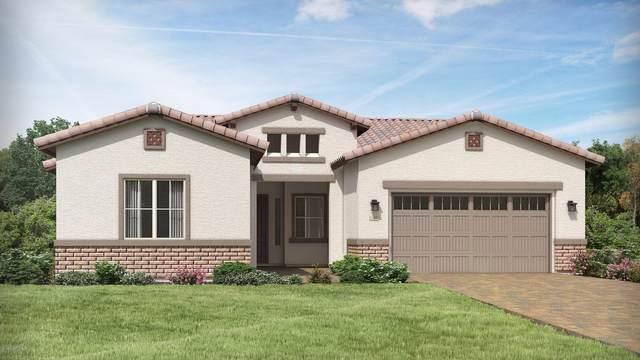 17296 W Norwich Drive, Surprise, AZ 85387 (MLS #6117750) :: Brett Tanner Home Selling Team