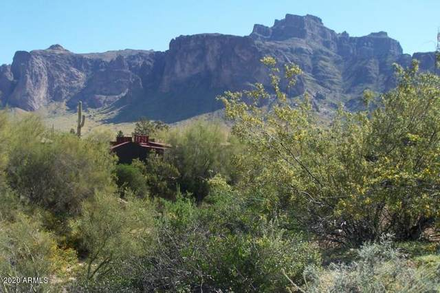 4600 E Greasewood (Approx) Street, Apache Junction, AZ 85119 (MLS #6117763) :: neXGen Real Estate
