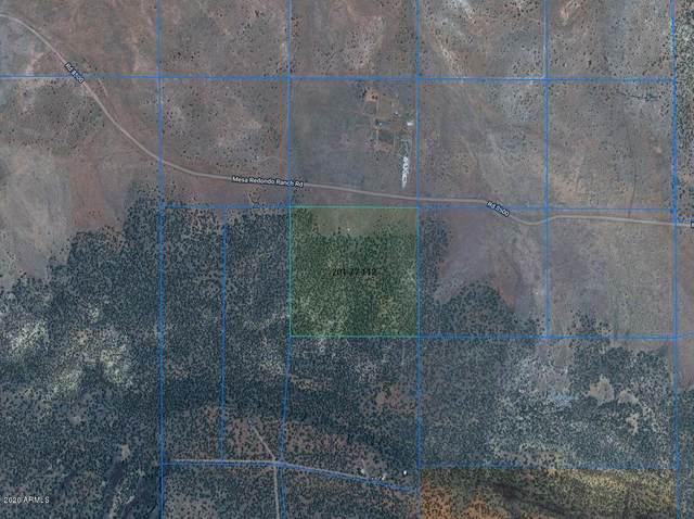 00 S Mesa Ranch Rd . #8500-112 Road, Concho, AZ 85924 (MLS #6117767) :: Lifestyle Partners Team