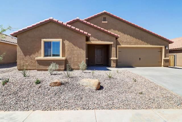 541 W Black Hawk Place, Casa Grande, AZ 85122 (MLS #6117782) :: Klaus Team Real Estate Solutions