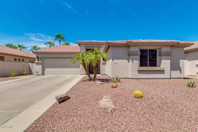 120 W Birchwood Place, Chandler, AZ 85248 (MLS #6117803) :: Klaus Team Real Estate Solutions