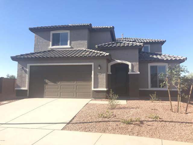 26006 N 162ND Avenue, Surprise, AZ 85387 (MLS #6117808) :: Lifestyle Partners Team