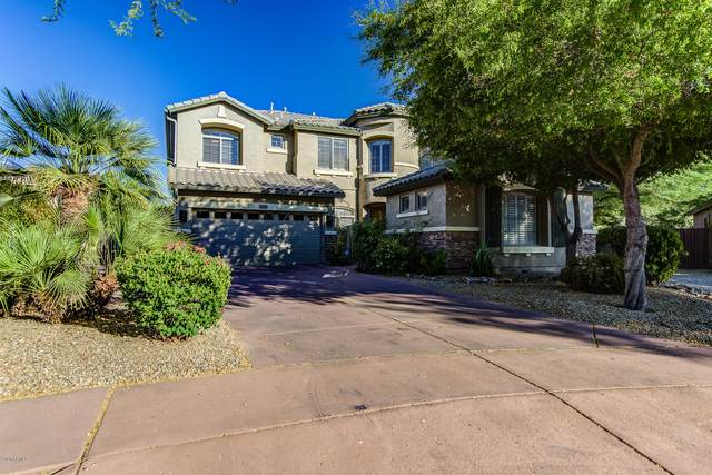 35501 N 30TH Drive, Phoenix, AZ 85086 (MLS #6117809) :: Conway Real Estate