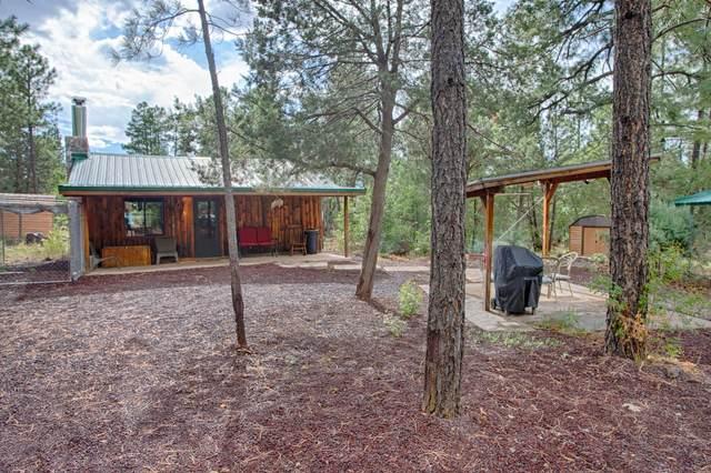 2940 N Blue Grass Ranch Drive, Lakeside, AZ 85929 (MLS #6117817) :: The Daniel Montez Real Estate Group