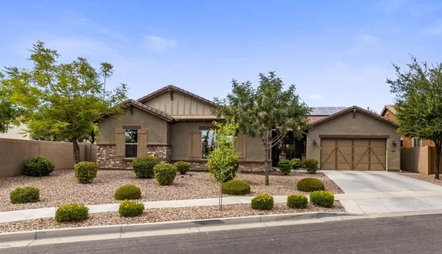 3406 E Franklin Avenue, Gilbert, AZ 85295 (MLS #6117853) :: Dijkstra & Co.