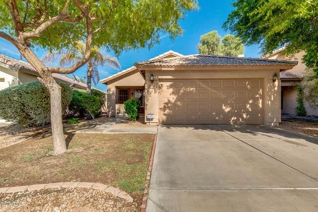 2017 N 107TH Drive, Avondale, AZ 85392 (MLS #6117886) :: Lifestyle Partners Team