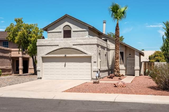 3528 W Ivanhoe Street, Chandler, AZ 85226 (MLS #6117894) :: Klaus Team Real Estate Solutions