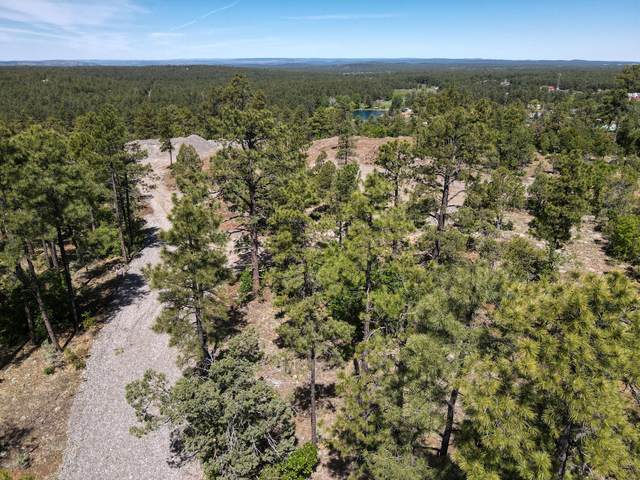 XXXX Jacks Road, Pinetop, AZ 85935 (MLS #6117917) :: Brett Tanner Home Selling Team