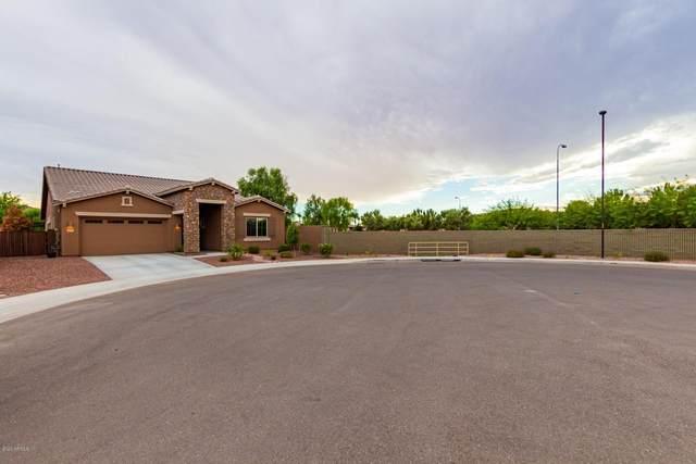 3021 E Desert Broom Place, Chandler, AZ 85286 (MLS #6117979) :: Klaus Team Real Estate Solutions