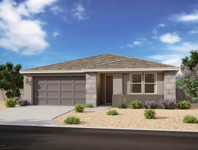 26337 N 133RD Avenue, Peoria, AZ 85383 (MLS #6117982) :: The Everest Team at eXp Realty