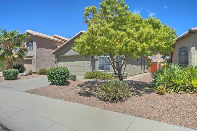 4410 E Windsong Drive, Phoenix, AZ 85048 (MLS #6117986) :: The Everest Team at eXp Realty