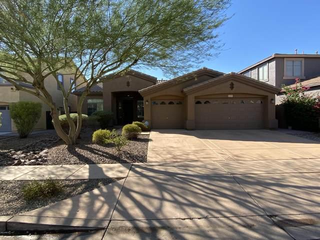 2718 W Via Calabria Way, Phoenix, AZ 85086 (MLS #6117998) :: Conway Real Estate
