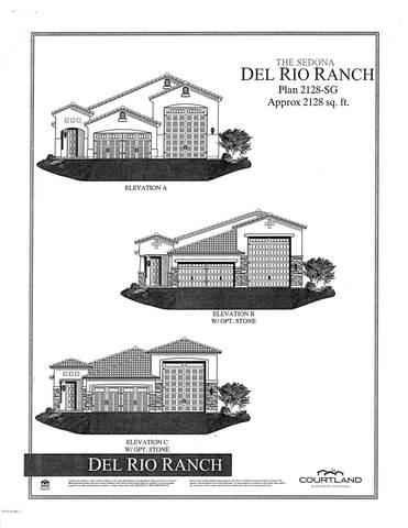 12005 W Calle Hermosa Lane, Avondale, AZ 85323 (MLS #6118003) :: Klaus Team Real Estate Solutions