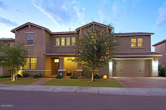 942 W Kaibab Drive, Chandler, AZ 85248 (MLS #6118004) :: Klaus Team Real Estate Solutions