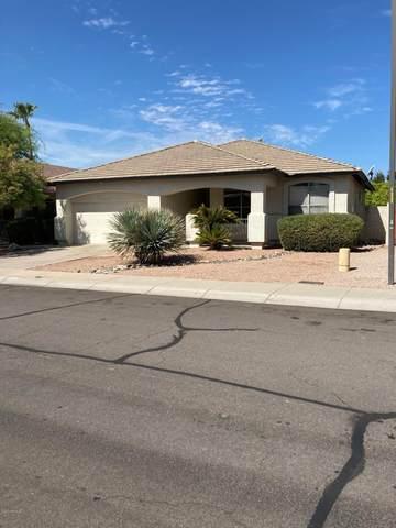 1144 N Cole Drive, Gilbert, AZ 85234 (MLS #6118017) :: Klaus Team Real Estate Solutions