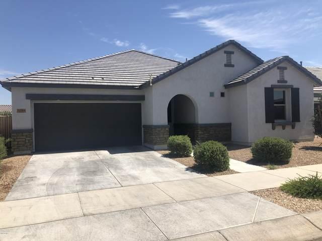 22784 E Via Del Palo, Queen Creek, AZ 85142 (MLS #6118034) :: Klaus Team Real Estate Solutions
