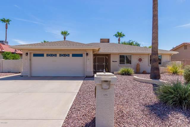 26013 S New Town Drive, Sun Lakes, AZ 85248 (MLS #6118093) :: Klaus Team Real Estate Solutions