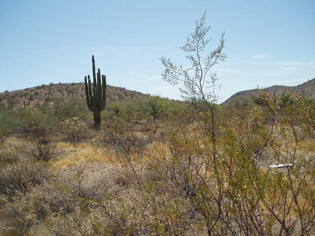 30887 W Tamar Road, Unincorporated County, AZ 85361 (MLS #6118410) :: Long Realty West Valley