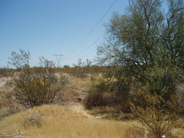 30613 W Dove Valley Road, Unincorporated County, AZ 85361 (#6118419) :: The Josh Berkley Team