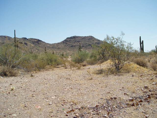 30180 W Madlock Road, Unincorporated County, AZ 85361 (MLS #6118429) :: Long Realty West Valley