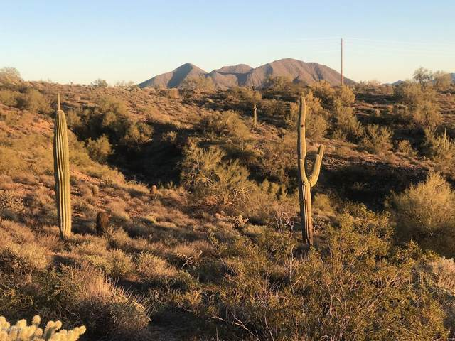 0 E Thirsty Earth Trail, Fort McDowell, AZ 85264 (MLS #6118436) :: Lucido Agency