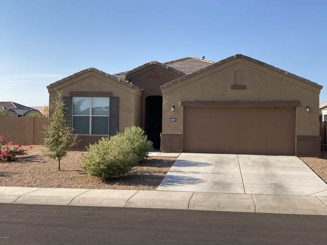 4077 W South Butte Road, Queen Creek, AZ 85142 (MLS #6118528) :: Conway Real Estate