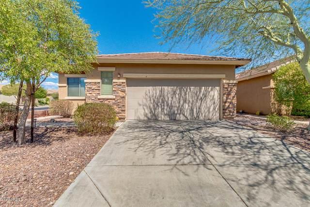 40131 N Thunder Hills Court, Phoenix, AZ 85086 (MLS #6118616) :: Lucido Agency