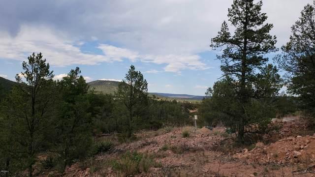 459 N Ike Clark Parkway, Young, AZ 85554 (MLS #6118883) :: Howe Realty