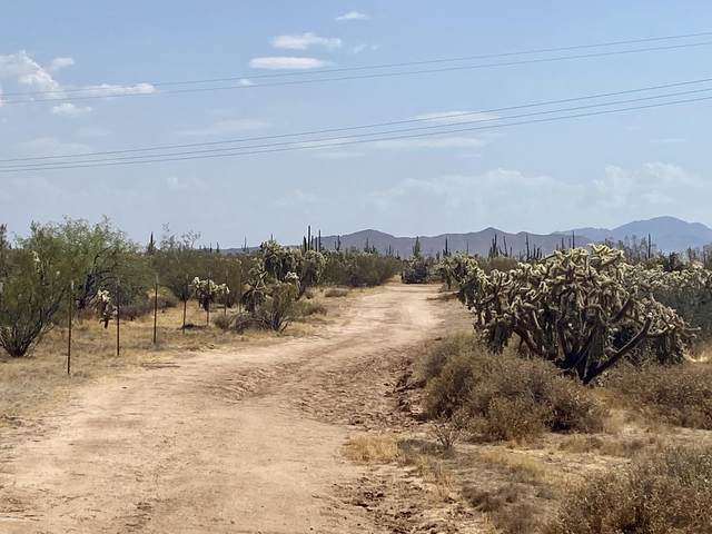 0 S Dolores Road, Florence, AZ 85132 (MLS #6118984) :: RE/MAX Desert Showcase
