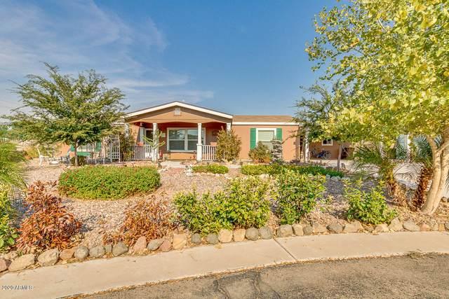 40671 N Birdie Street, San Tan Valley, AZ 85140 (MLS #6119026) :: Walters Realty Group