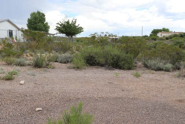 TBD N Cochise Court, Tombstone, AZ 85638 (MLS #6119062) :: Lucido Agency