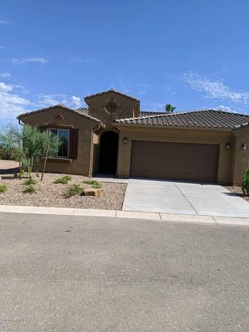 4420 W Hanna Drive, Eloy, AZ 85131 (#6119227) :: The Josh Berkley Team