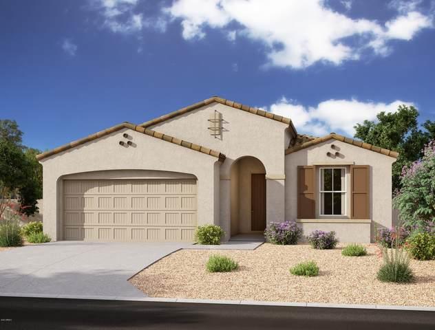 4131 S Apollo, Mesa, AZ 85212 (MLS #6119234) :: Balboa Realty