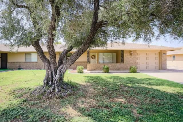 9441 W Long Hills Drive, Sun City, AZ 85351 (MLS #6119495) :: The Property Partners at eXp Realty