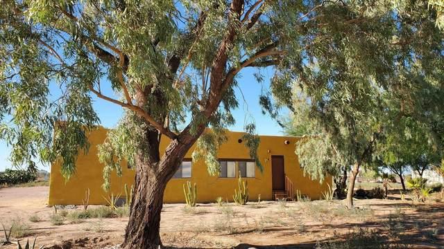 50668 W Esch Trail, Maricopa, AZ 85139 (MLS #6119523) :: Conway Real Estate